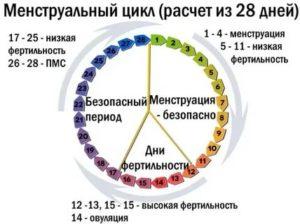 Пришли месячные на 17 день цикла