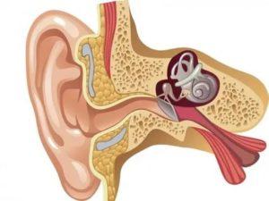 Тубоотит или болезнь меньера