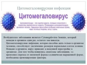 Температура при цитомегаловирусной инфекции