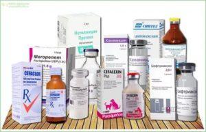 Антибиотики после гистероскопии