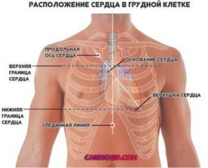 Стуки в грудной клетке
