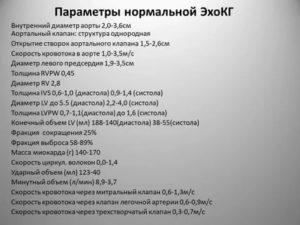 Расшифровка результата ЭхоКг