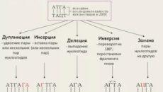 Анализ стекол на генные мутации: корректно ли взятие и хранение