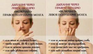 Ноздри дышат поочерёдно