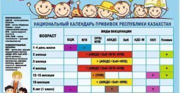 Индивидуальный календарь прививок