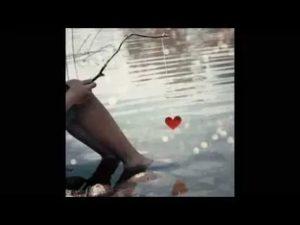 Сердечко шалит