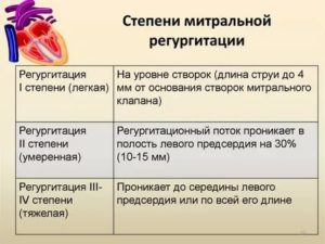 Недостаточность аортального клапана: фиброз створок, регургитация до 2-3 степени